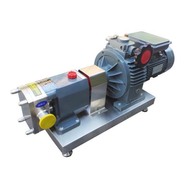 Vickers PV020R1K1JHNMMC+PV016R1L1T1NMR Piston Pump PV Series #1 image